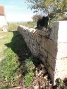 Restauration d'un mur de clôture - Malefon - Cazillac (46)